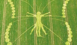 crop patterns